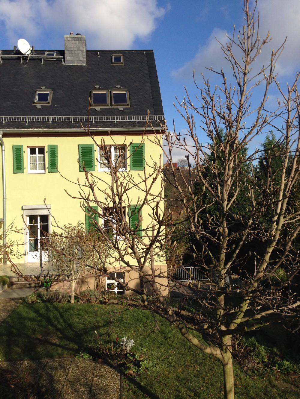 Die West- und Gartenseite des Hauses.