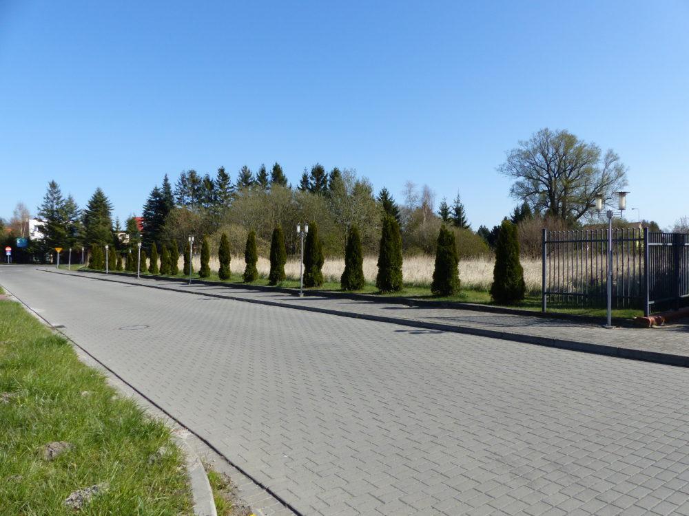 Die Grundstücksoption für eine Saunalandschaft